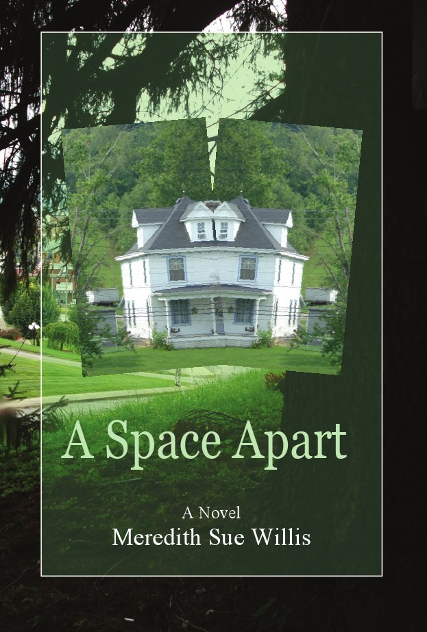 A Space Apart Ebook Cover Image